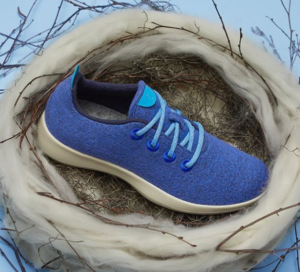 Last minute Fathers Day presents: Allbirds