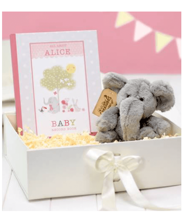 Personalised Baby Record Gift Main Image